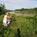 Nestlé pianterà 3 milioni di alberi entro il 2023 in Malesia